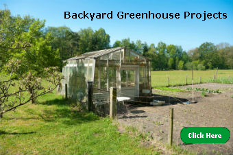 Backyard Greenhouse Projects